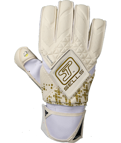 Goalkeeper gloves Sells pro f3 gold guard